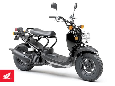 Honda Ruckus Zoomer scooter pictures - motorcycle